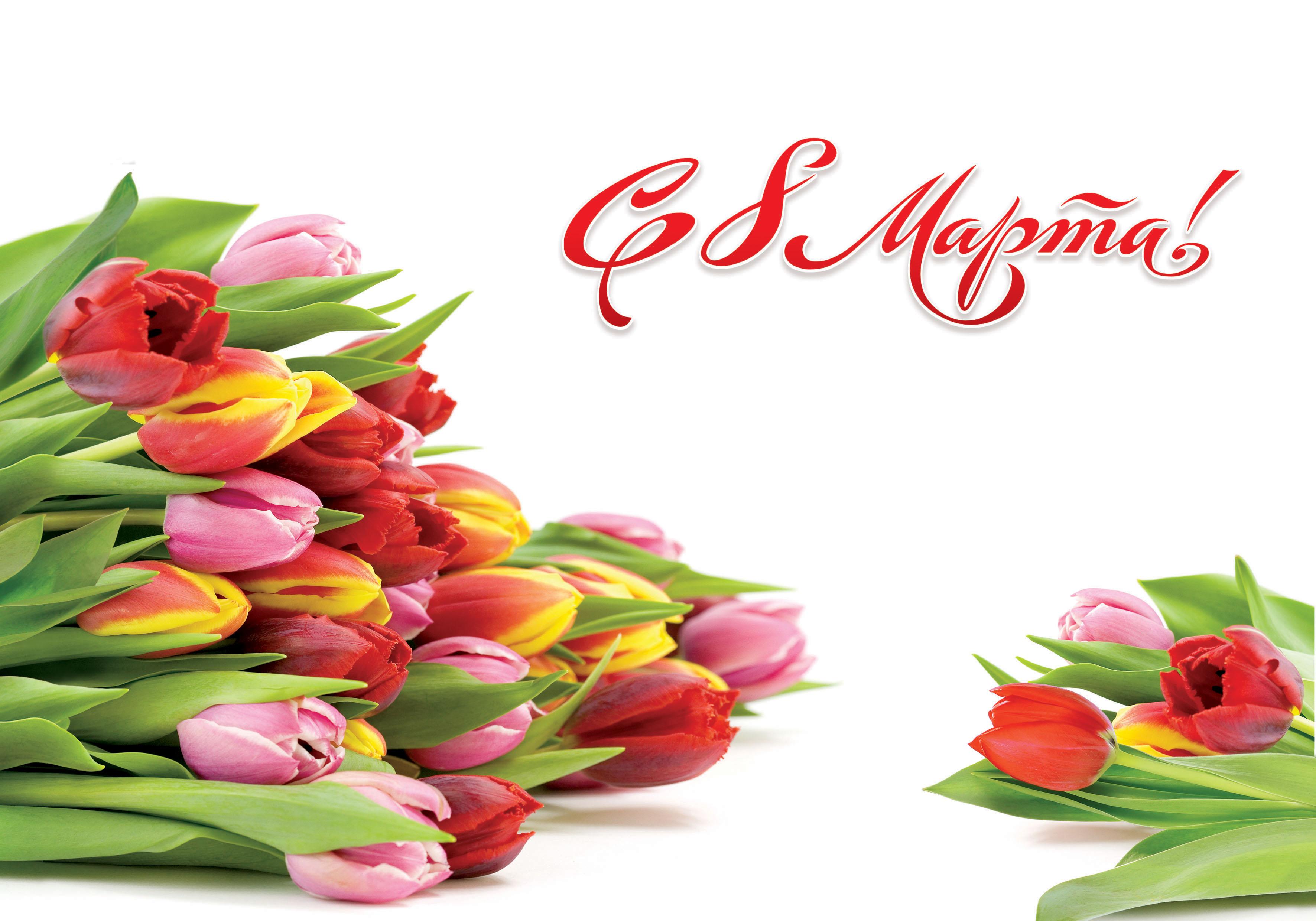 Краткие поздравления с марта