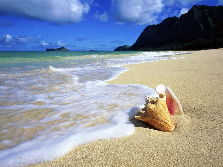 подходит всем поехать в марте на море недалеко Favorites Add Compare